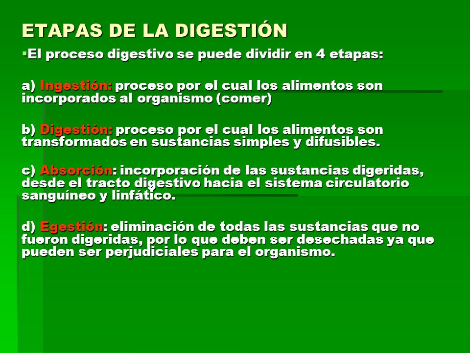 ETAPAS DE LA DIGESTIÓN El proceso digestivo se puede dividir en 4 etapas: