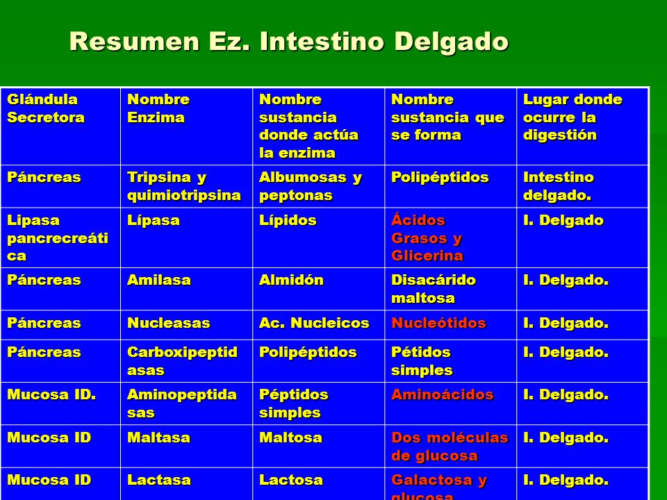 Resumen Ez. Intestino Delgado