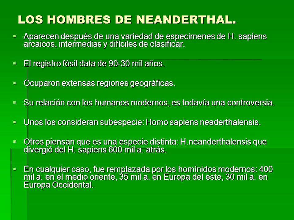 LOS HOMBRES DE NEANDERTHAL.