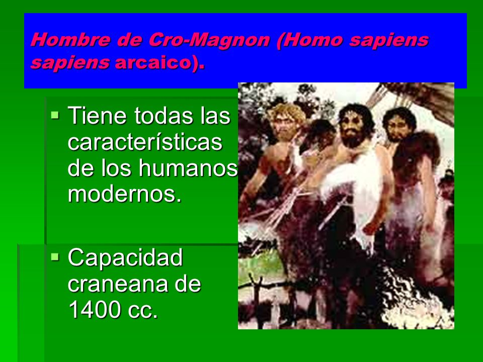 Hombre de Cro-Magnon (Homo sapiens sapiens arcaico).