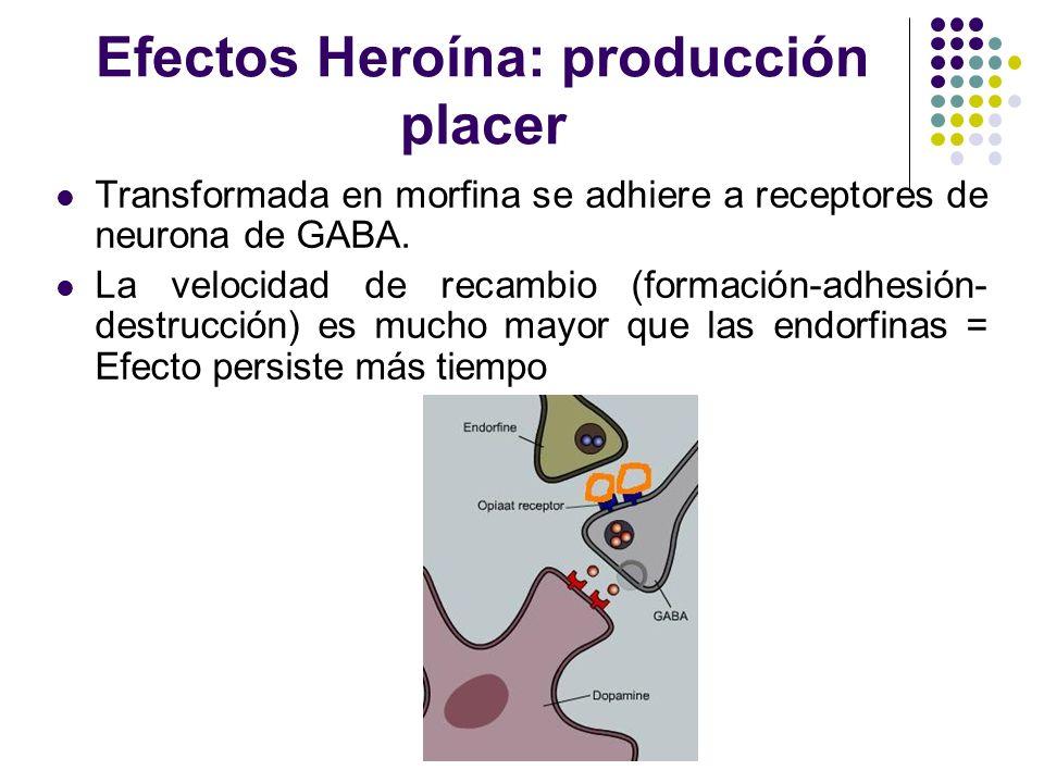 Efectos Heroína: producción placer