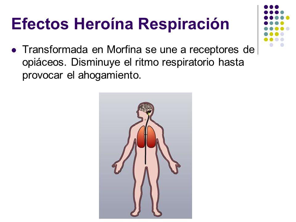 Efectos Heroína Respiración