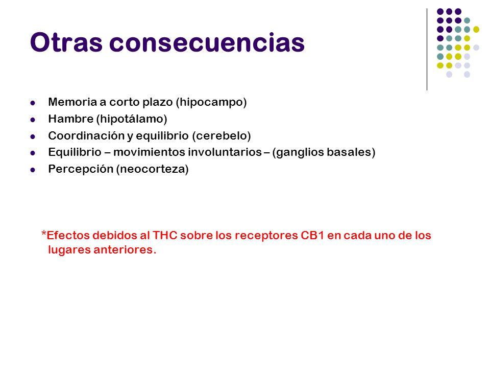 Otras consecuencias Memoria a corto plazo (hipocampo)