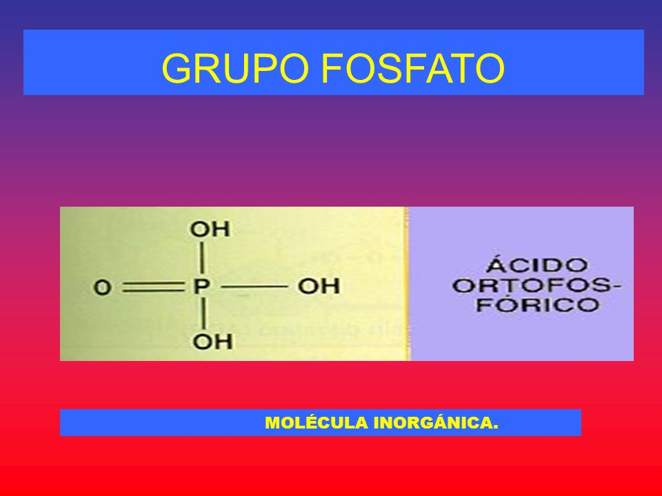 GRUPO FOSFATO MOLÉCULA INORGÁNICA.