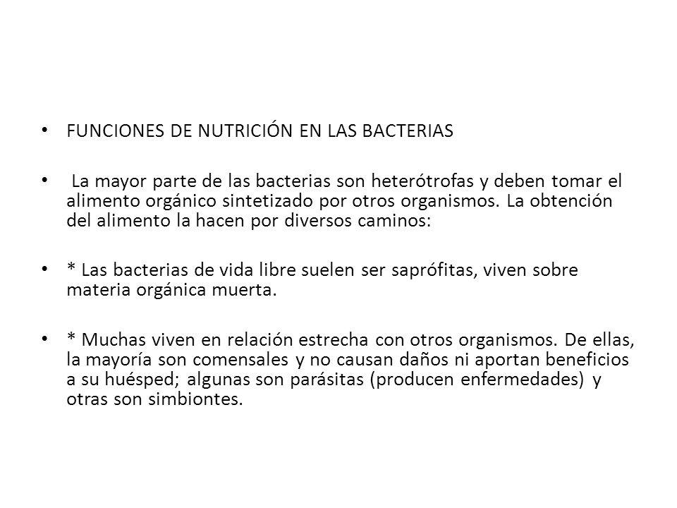 FUNCIONES DE NUTRICIÓN EN LAS BACTERIAS
