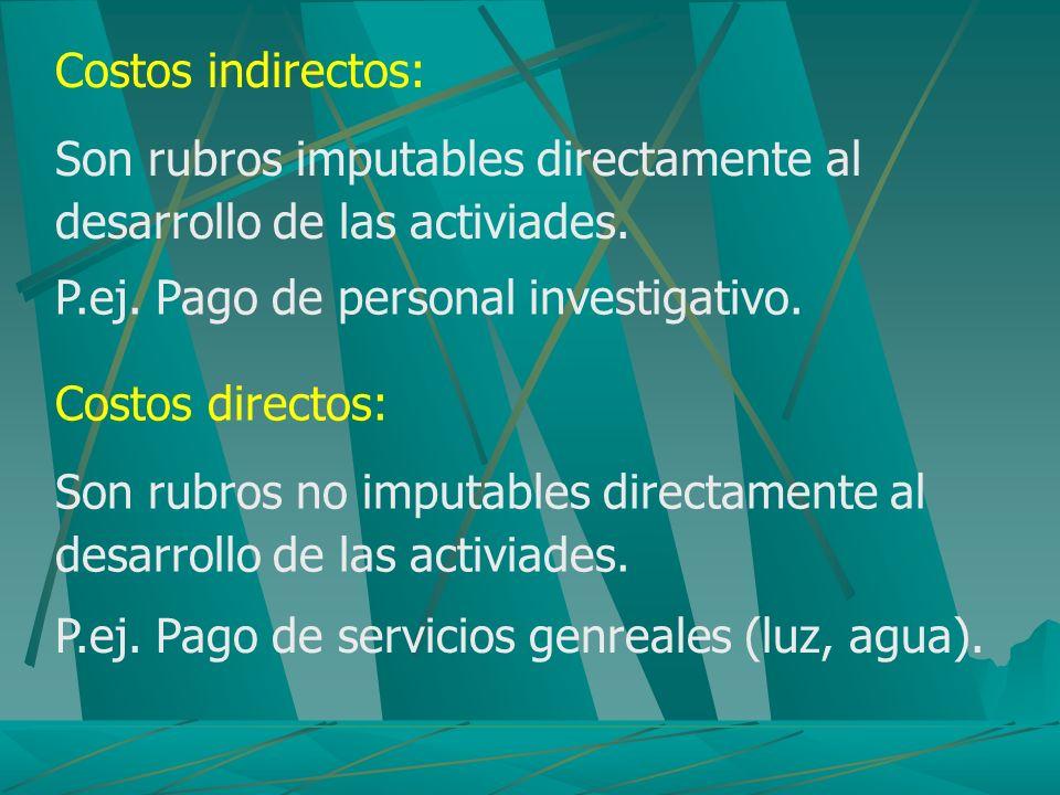 Costos indirectos: Son rubros imputables directamente al desarrollo de las activiades. P.ej. Pago de personal investigativo.