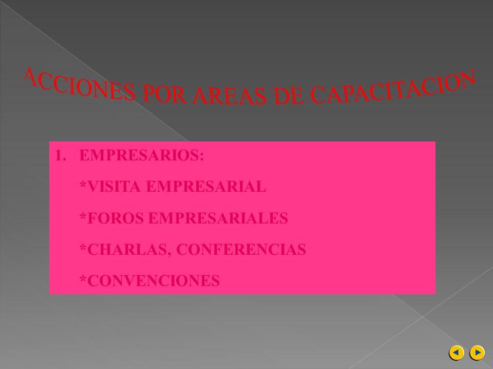 ACCIONES POR AREAS DE CAPACITACION
