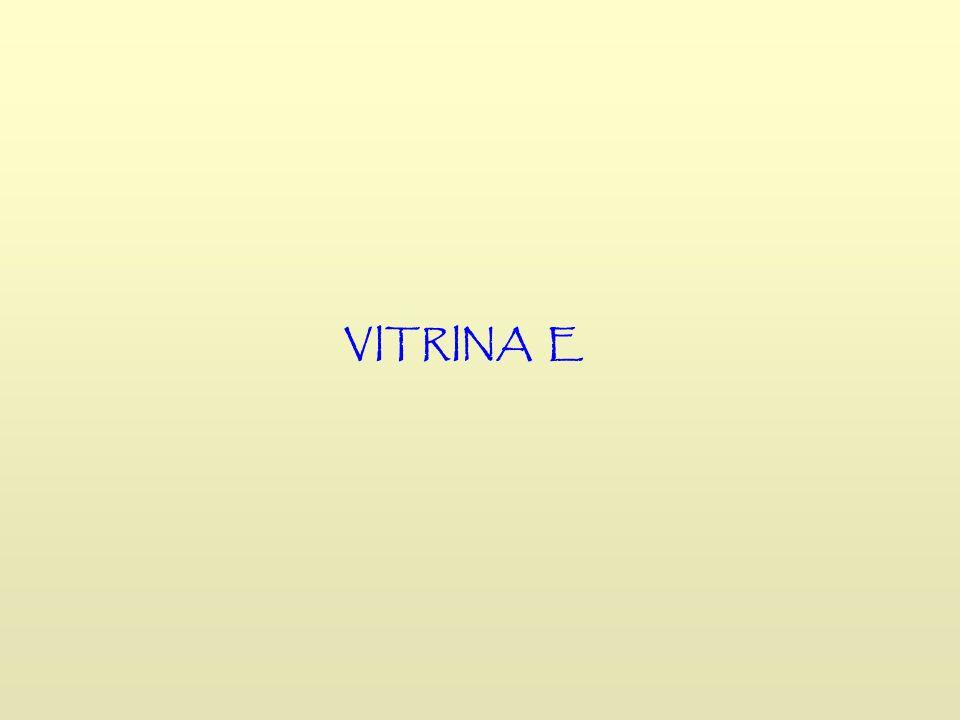 VITRINA E
