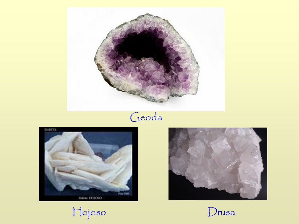 Geoda Drusa Hojoso