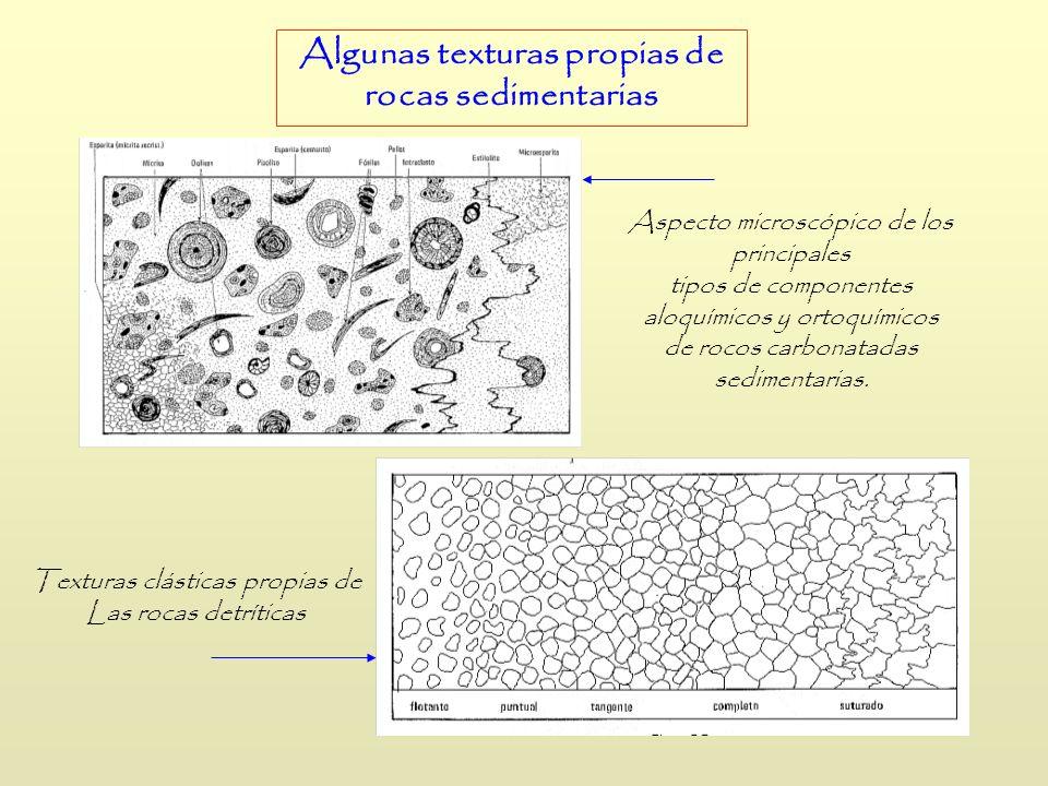 Algunas texturas propias de rocas sedimentarias