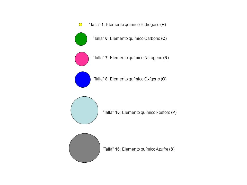 Talla 1: Elemento químico Hidrógeno (H)