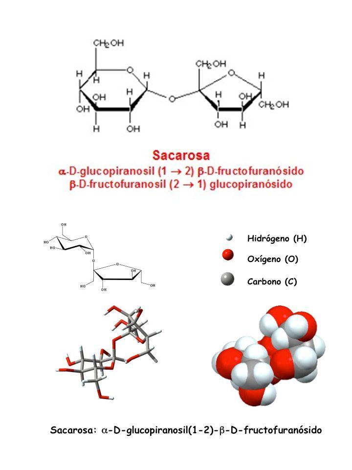 http://www.bioquimicaqui11601.ucv.cl/unidades/hdec/HdeC3.htmlhttp://educacionquimica.files.wordpress.com/2011/06/sacarosa.jpg.
