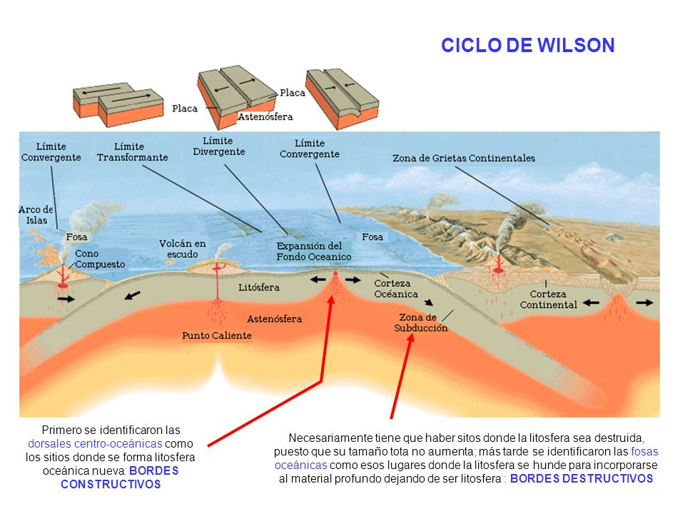 CICLO DE WILSON http://upload.wikimedia.org/wikipedia/commons/2/26/Limitesdeplacastect%C3%B3nicas.PNG.