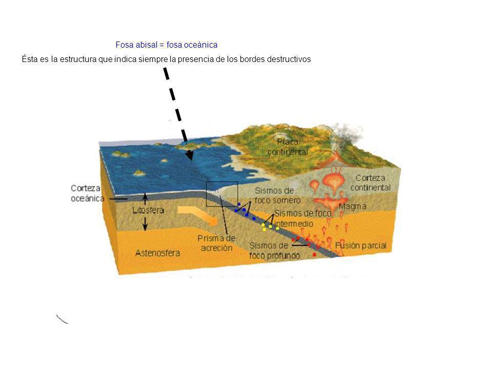 Fosa abisal = fosa oceánica