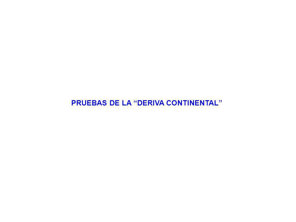 PRUEBAS DE LA DERIVA CONTINENTAL
