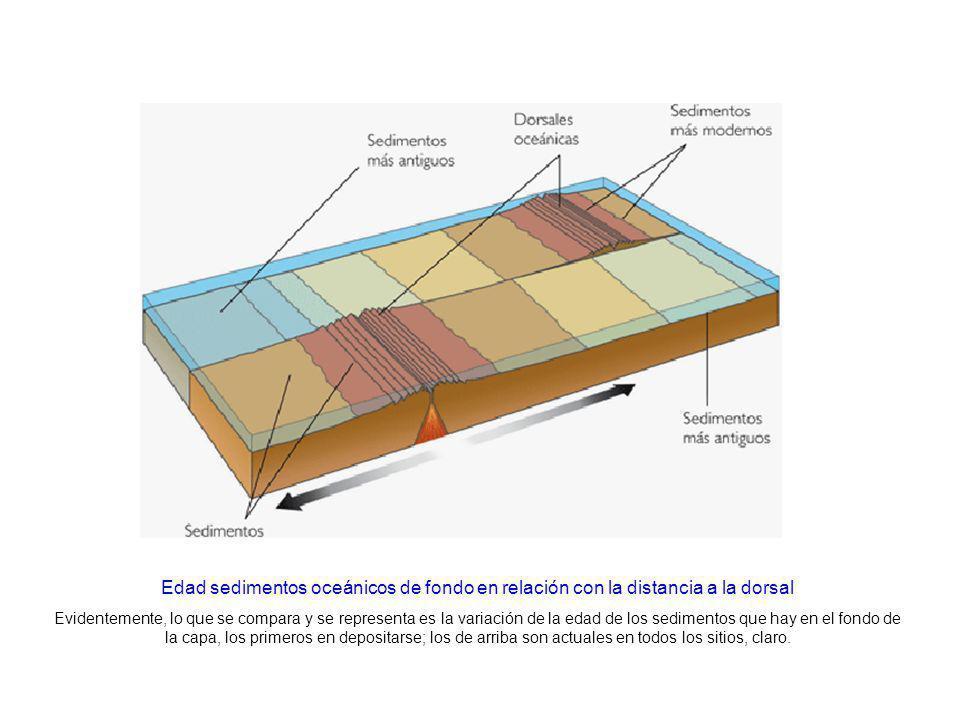 http://www.kalipedia.com/geografia-espana/tema/graficos-sedimentos-fondo-marino.html x1=20070417klpcnatun_41.Ees&x=20070417klpcnatun_28.Kes