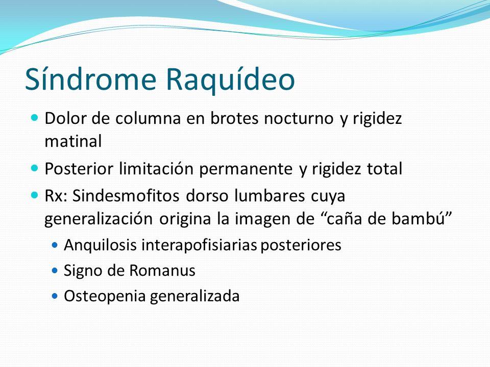 Síndrome Raquídeo Dolor de columna en brotes nocturno y rigidez matinal. Posterior limitación permanente y rigidez total.