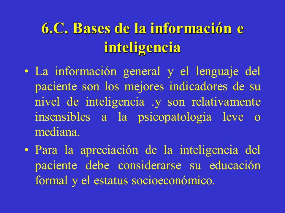 6.C. Bases de la información e inteligencia