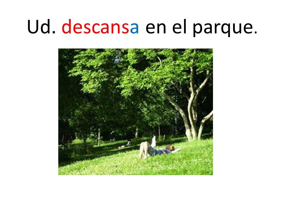 Ud. descansa en el parque.