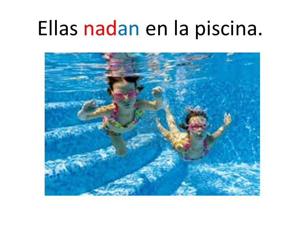 Ellas nadan en la piscina.