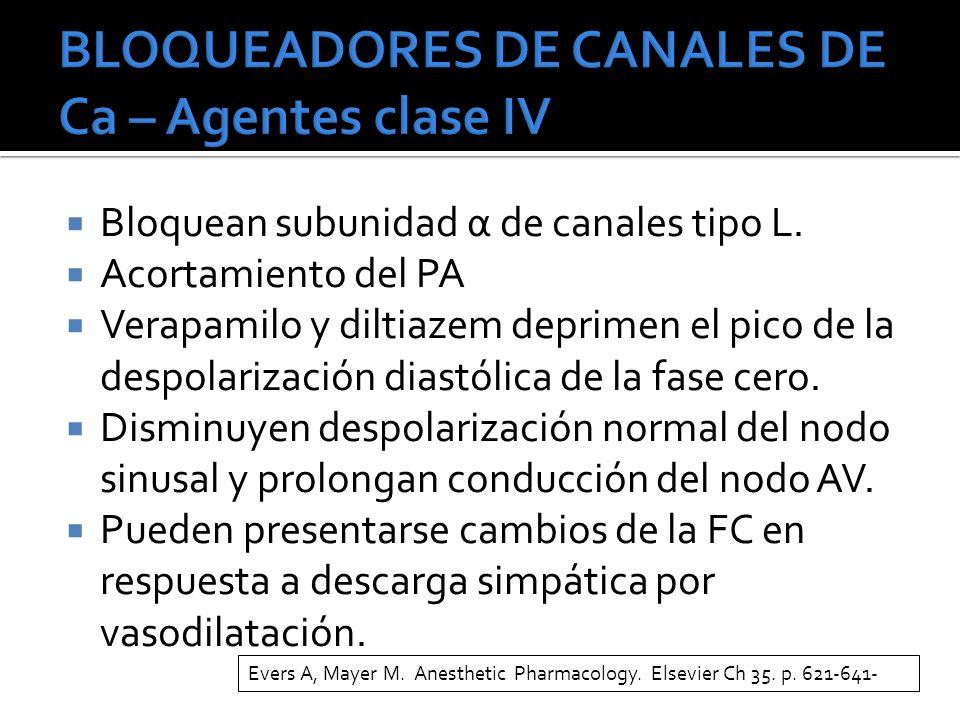 BLOQUEADORES DE CANALES DE Ca – Agentes clase IV