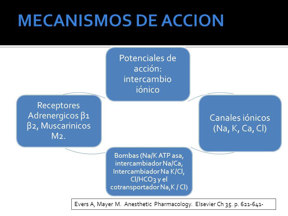 MECANISMOS DE ACCION Potenciales de acción: intercambio iónico