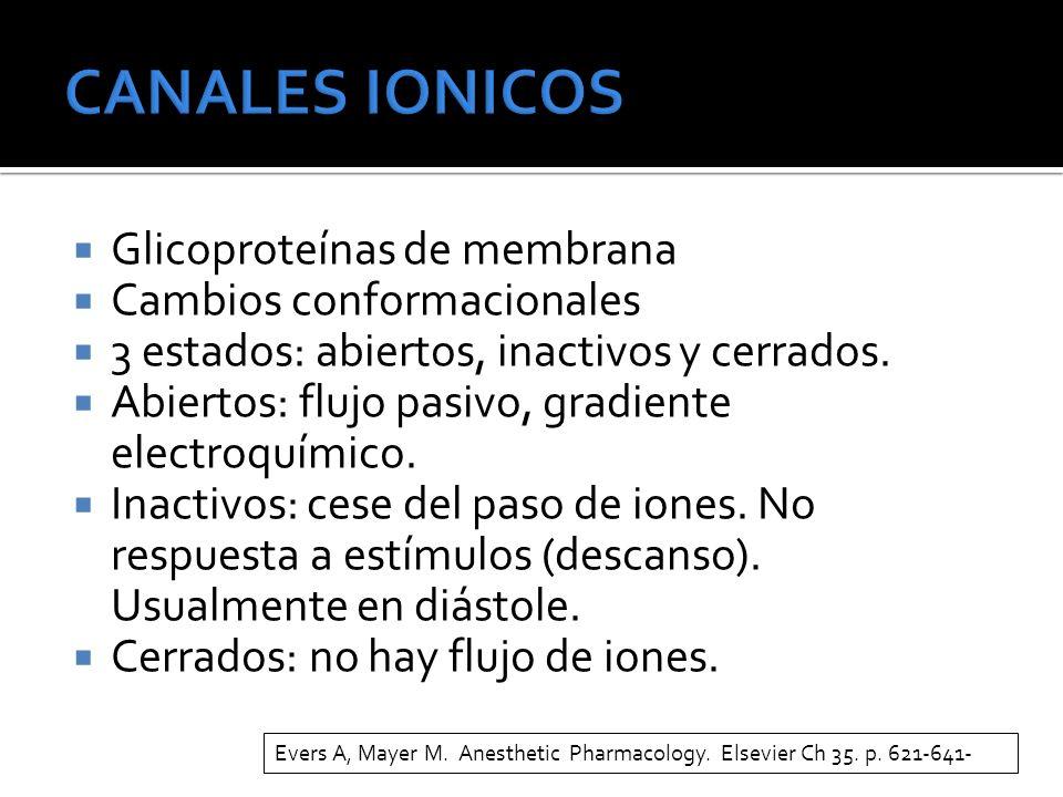 CANALES IONICOS Glicoproteínas de membrana Cambios conformacionales