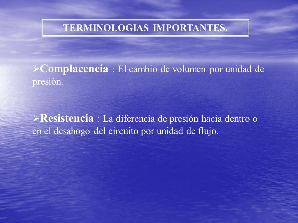 TERMINOLOGIAS IMPORTANTES.