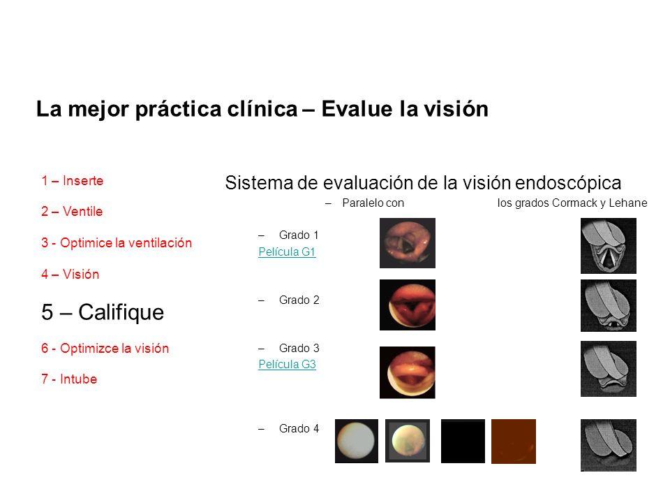 La mejor práctica clínica – Evalue la visión