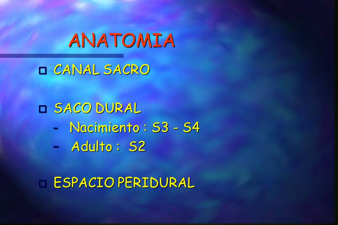 ANATOMIA CANAL SACRO SACO DURAL Adulto : S2 ESPACIO PERIDURAL