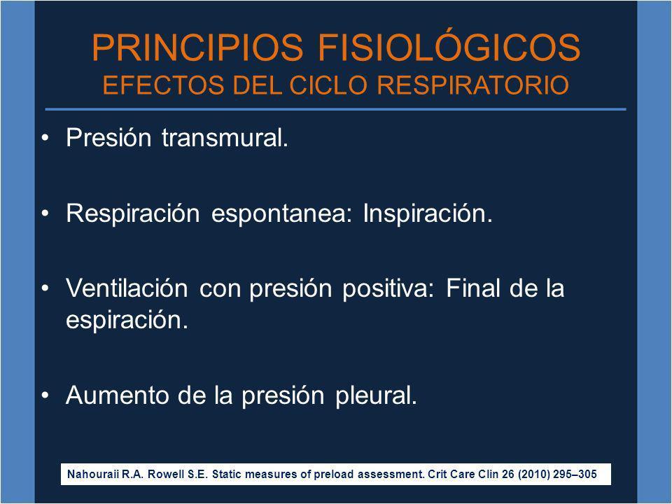 PRINCIPIOS FISIOLÓGICOS EFECTOS DEL CICLO RESPIRATORIO