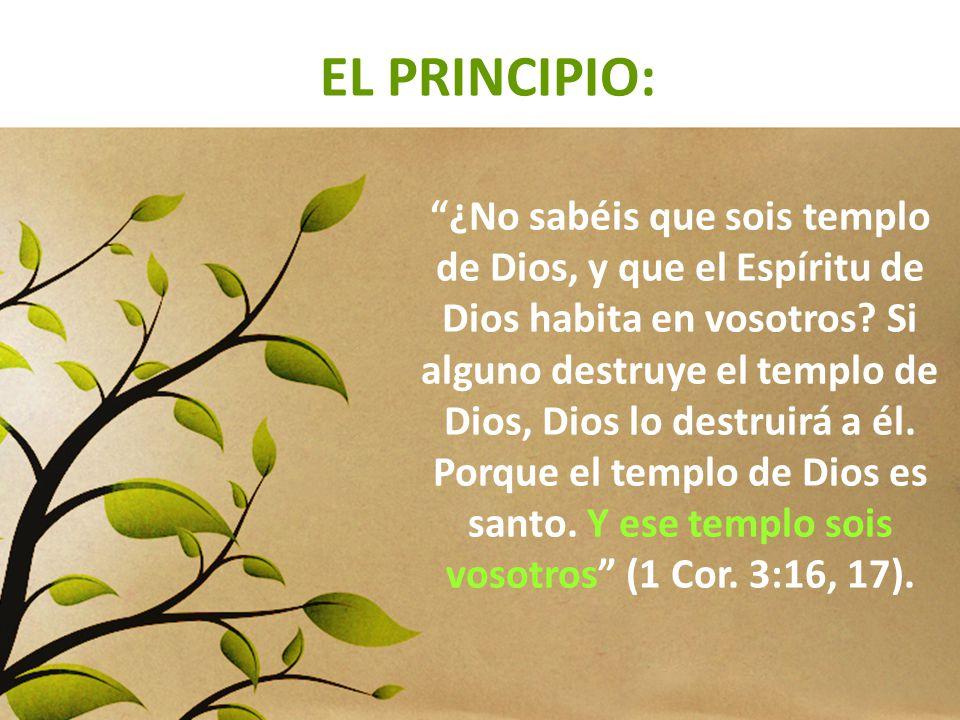EL PRINCIPIO: