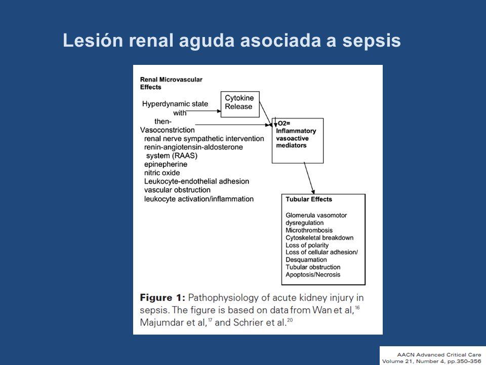 Lesión renal aguda asociada a sepsis