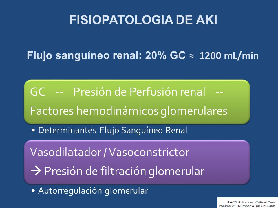 FISIOPATOLOGIA DE AKI Flujo sanguíneo renal: 20% GC ≈ 1200 mL/min