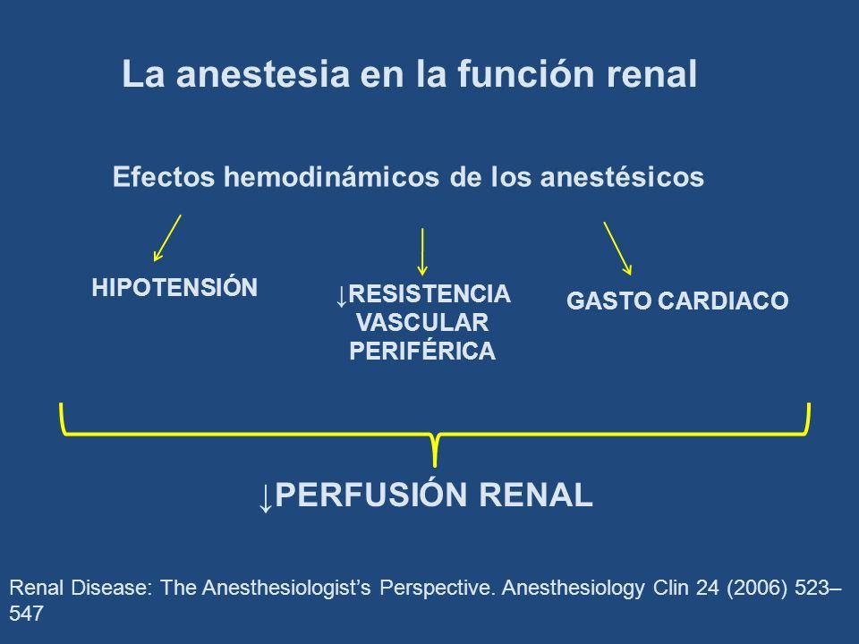 La anestesia en la función renal