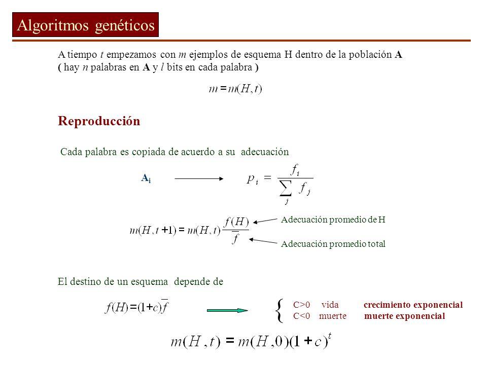 { Algoritmos genéticos Reproducción