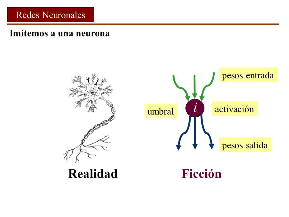 i Realidad Ficción Redes Neuronales Imitemos a una neurona