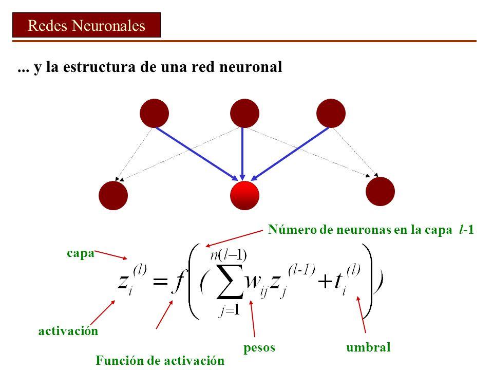... y la estructura de una red neuronal