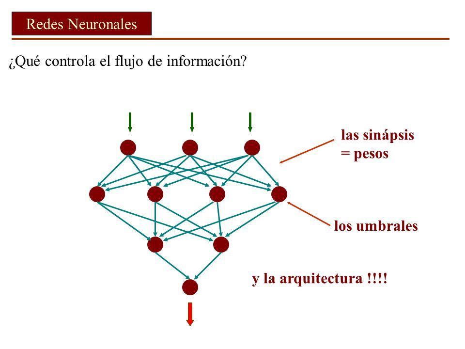 ¿Qué controla el flujo de información