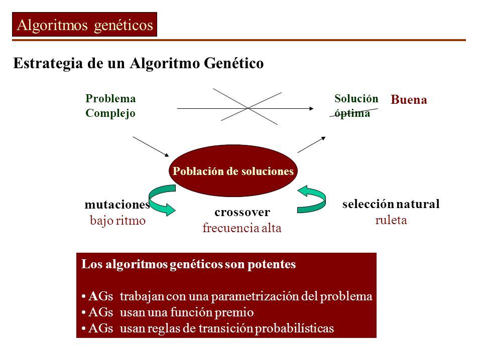 Estrategia de un Algoritmo Genético