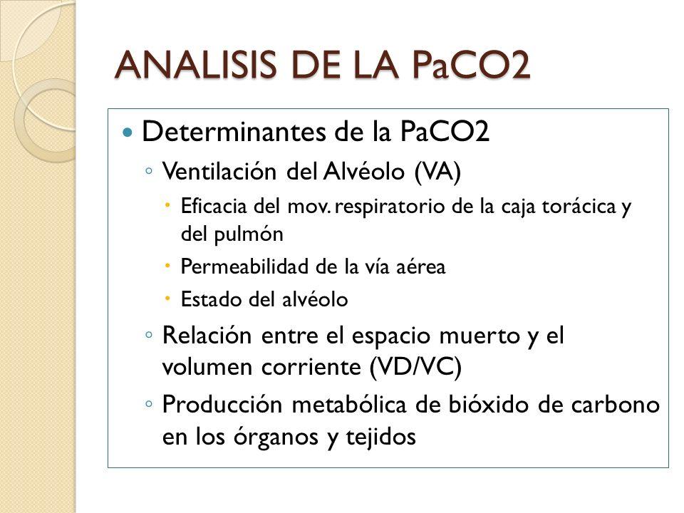 ANALISIS DE LA PaCO2 Determinantes de la PaCO2