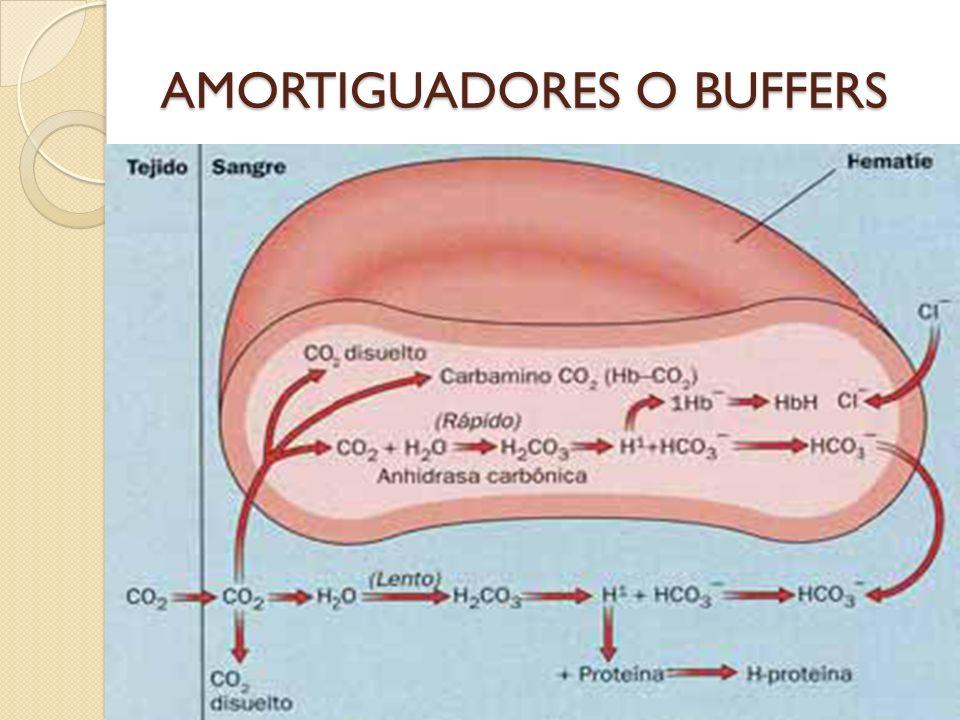 AMORTIGUADORES O BUFFERS
