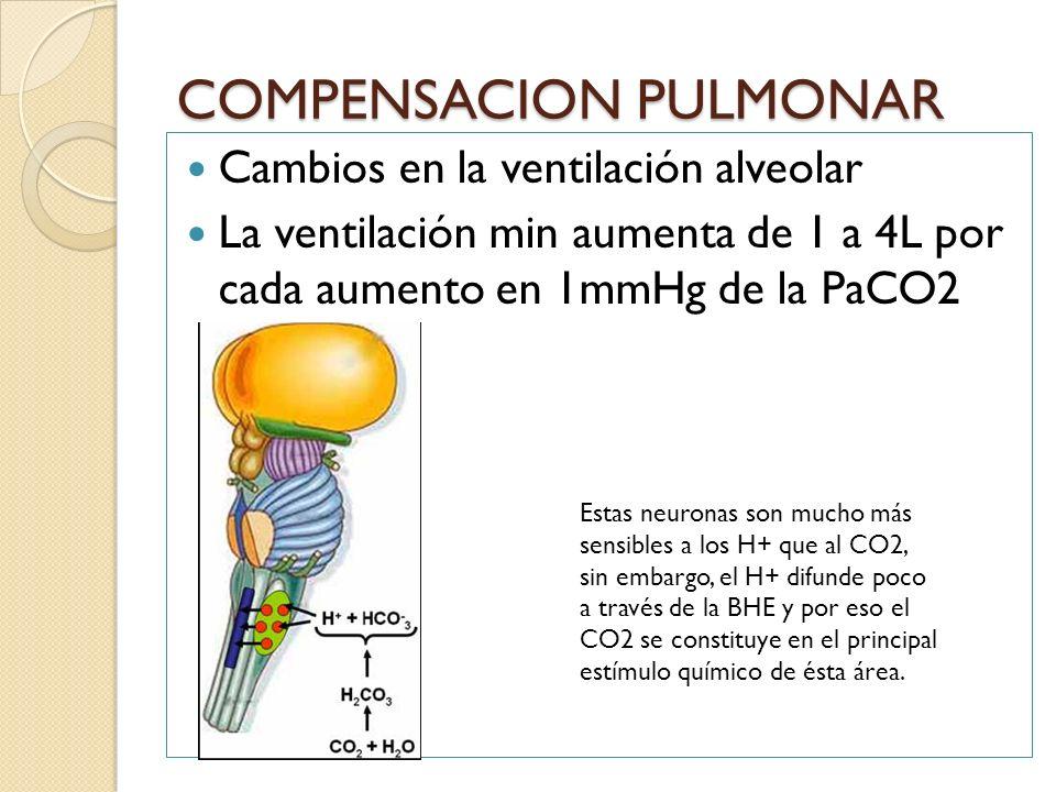 COMPENSACION PULMONAR