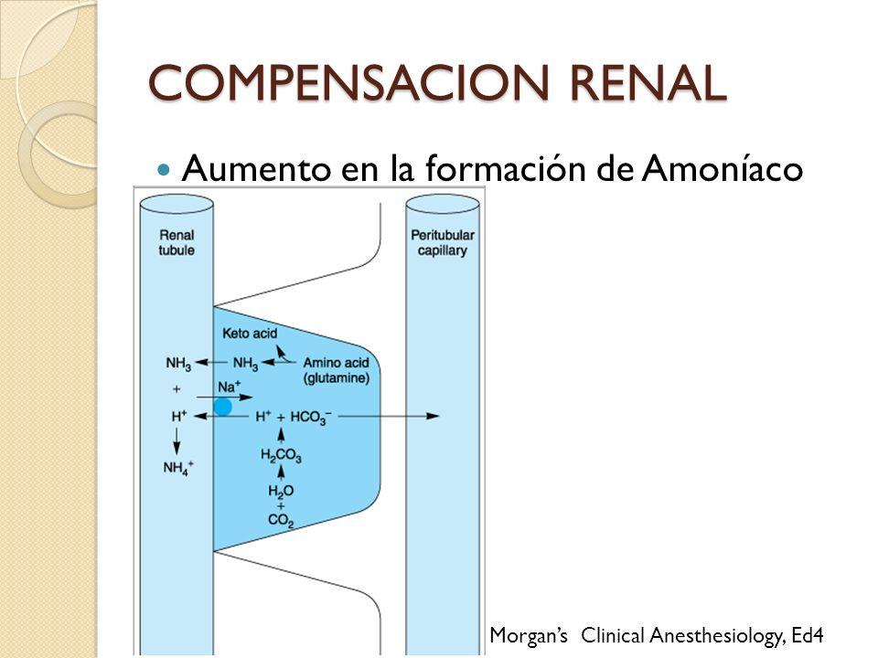 COMPENSACION RENAL Aumento en la formación de Amoníaco
