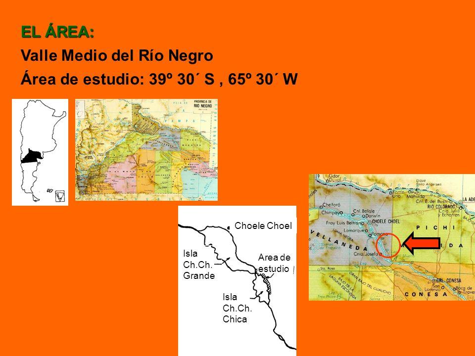 Valle Medio del Río Negro Área de estudio: 39º 30´ S , 65º 30´ W