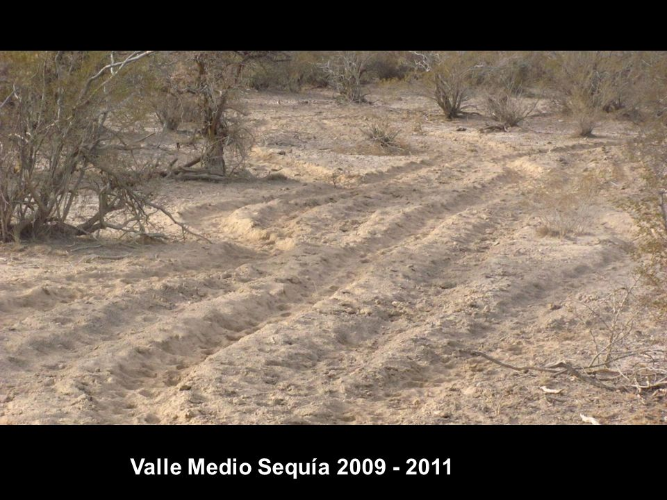 Valle Medio Sequía 2009 - 2011