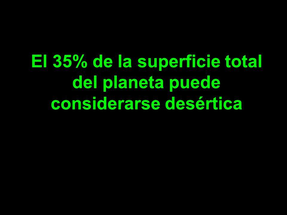 El 35% de la superficie total del planeta puede considerarse desértica