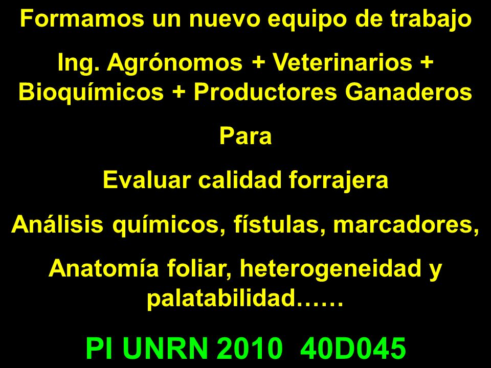 PI UNRN 2010 40D045 Formamos un nuevo equipo de trabajo
