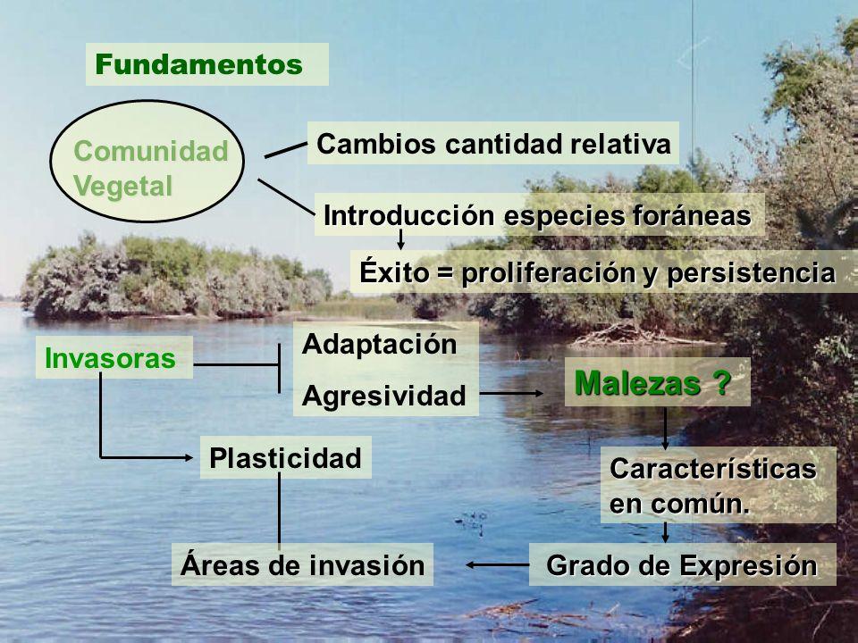 Malezas Fundamentos Cambios cantidad relativa Comunidad Vegetal