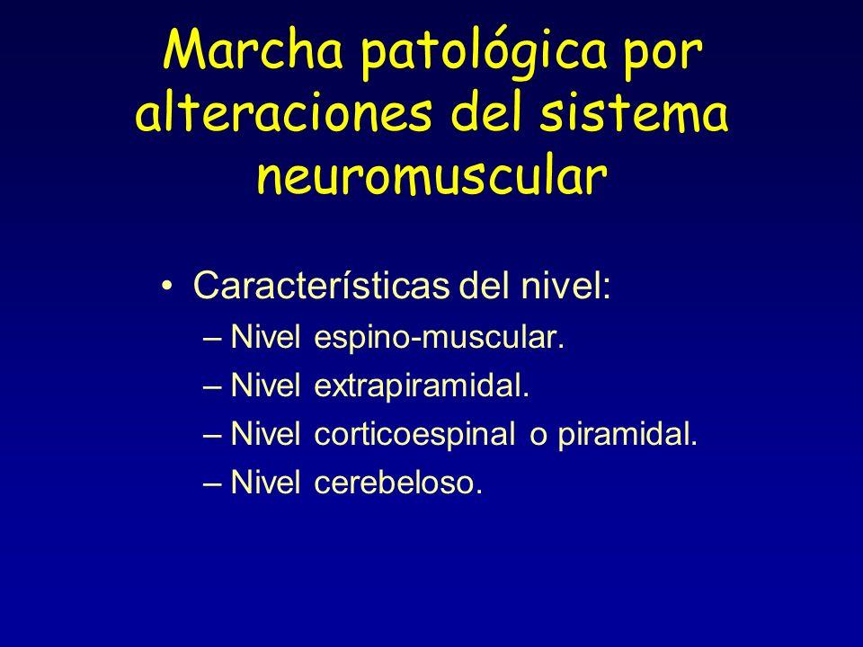 Marcha patológica por alteraciones del sistema neuromuscular